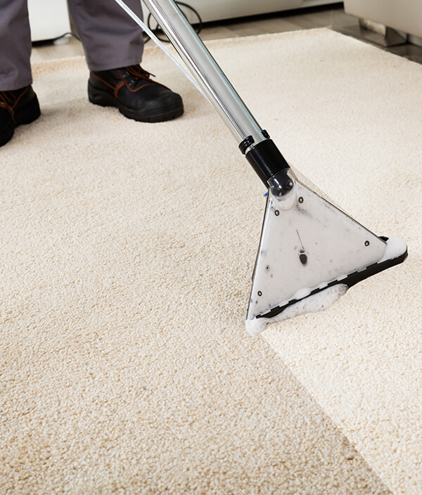 Deep Office Cleaning in Cambridge with a Wet Vacuum